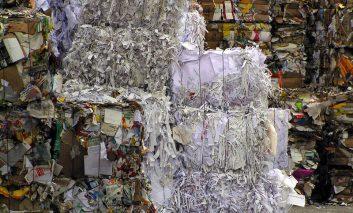 Papierkonsum - der sinnvolle Umgang mit der weißen Ressource