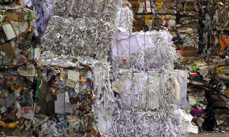 Papierkonsum – der sinnvolle Umgang mit der weißen Ressource